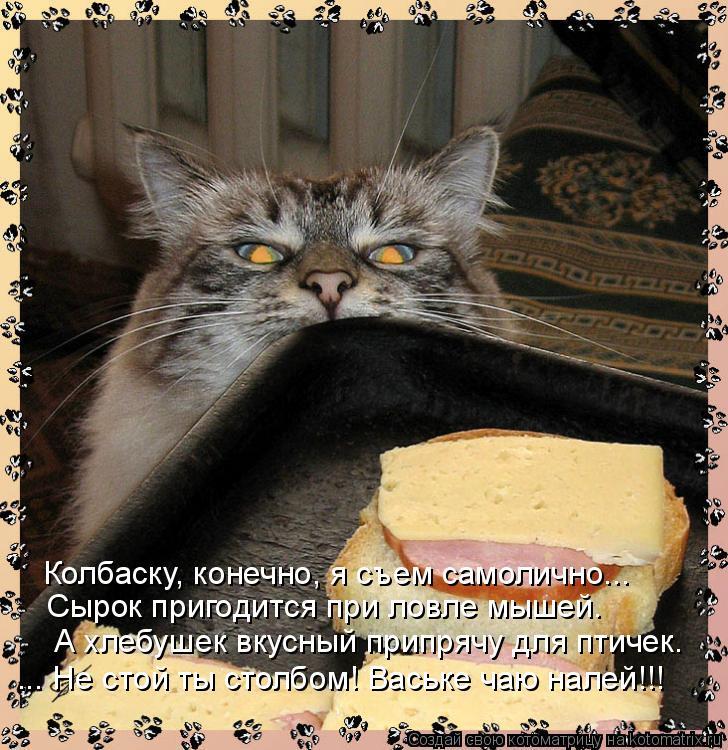 Котоматрица - Колбаску, конечно, я съем самолично... Сырок пригодится при ловле мыше