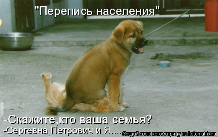 """Котоматрица: """"Перепись населения"""" -Скажите,кто ваша семья? -Сергевна,Петрович и Я...."""