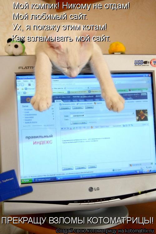 Котоматрица: Мой компик! Никому не отдам! Мой любимый сайт. Ух, я покажу этим котам! Как взламывать мой сайт. ПРЕКРАЩУ ВЗЛОМЫ КОТОМАТРИЦЫ!