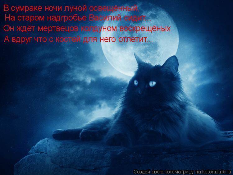 Котоматрица: В сумраке ночи луной освещённый, На старом надгробье Василий сидит... Он ждёт мертвецов колдуном воскрещёных  А вдруг что с костей для него о