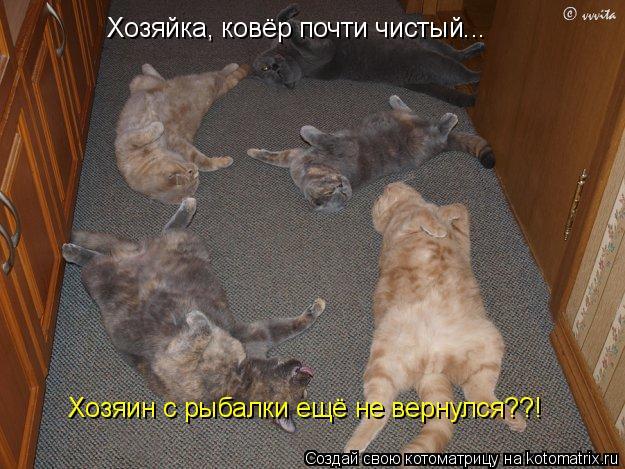 Котоматрица: Хозяйка, ковёр почти чистый...  Хозяин с рыбалки ещё не вернулся??!