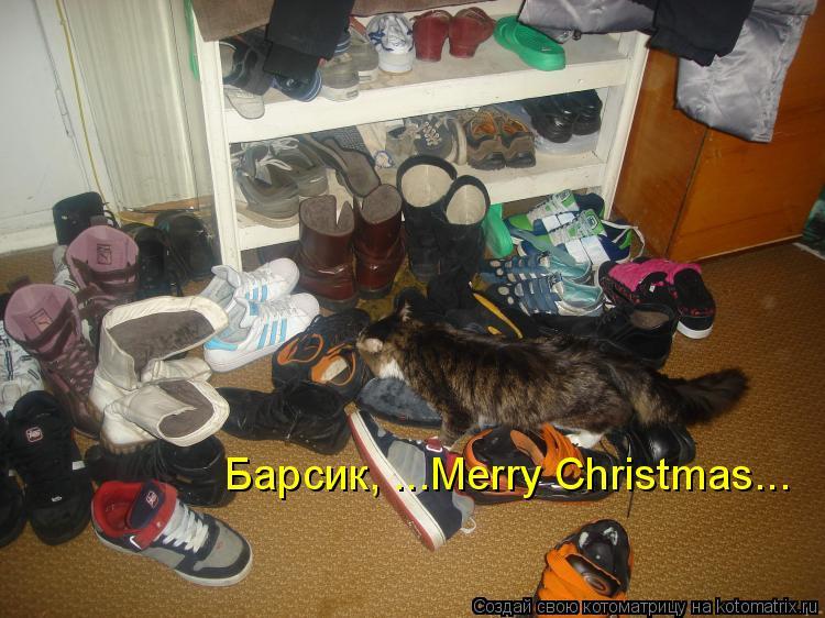Котоматрица: Барсик, ...Merry Christmas...