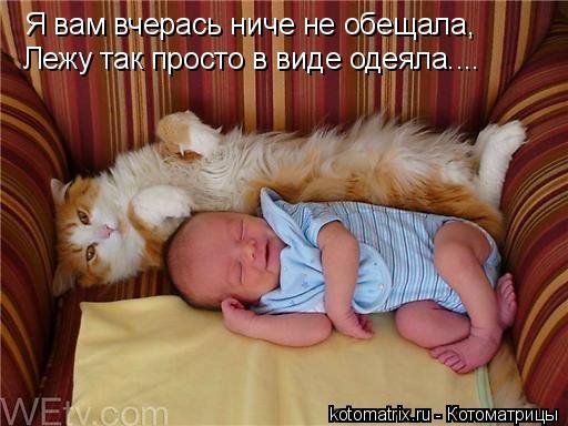 Котоматрица - Я вам вчерась ниче не обещала, Лежу так просто в виде одеяла....