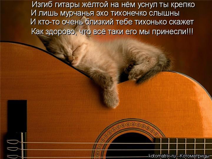Котоматрица: Изгиб гитары жёлтой на нём уснул ты крепко И лишь мурчанья эхо тихонечко слышны И кто-то очень близкий тебе тихонько скажет Как здорово, что