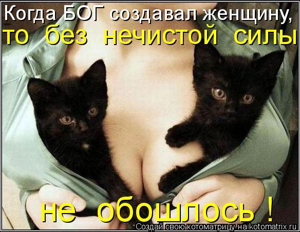 Котоматрица - Когда БОГ создавал женщину, то  без  нечистой  силы  не  обошлось !