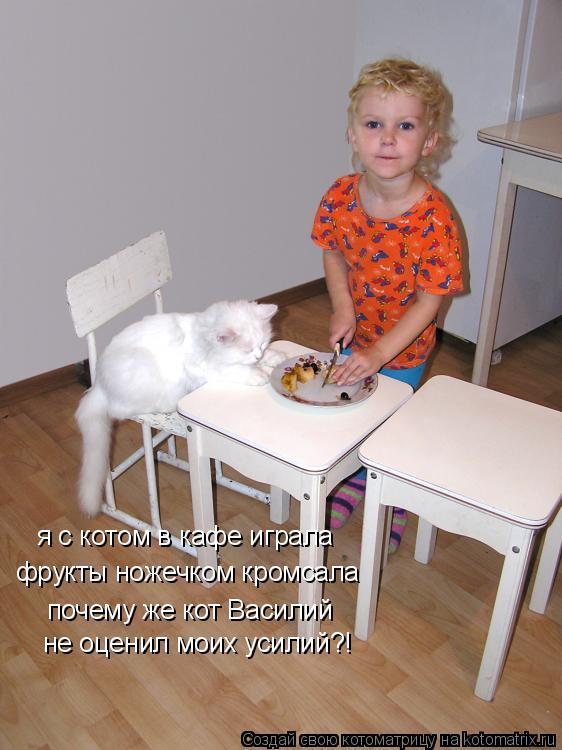 Котоматрица: фрукты ножечком кромсала почему же кот Василий не оценил моих усилий?! я с котом в кафе играла