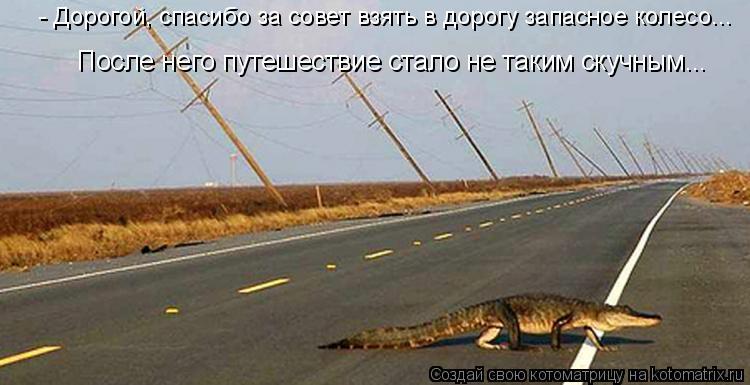 Котоматрица: - Дорогой, спасибо за совет взять в дорогу запасное колесо... После него путешествие стало не таким скучным...