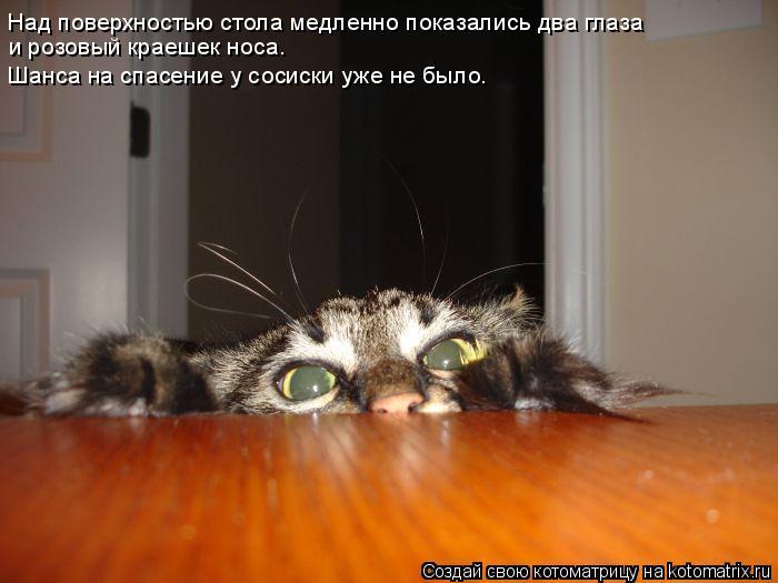 Котоматрица: Над поверхностью стола медленно показались два глаза  и розовый краешек носа. Шанса на спасение у сосиски уже не было.