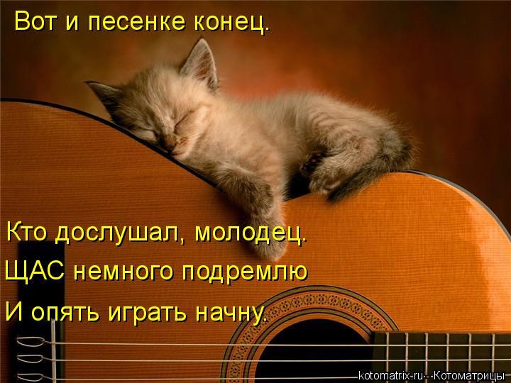 Котоматрица: Вот и песенке конец. Кто дослушал, молодец. ЩАС немного подремлю И опять играть начну.