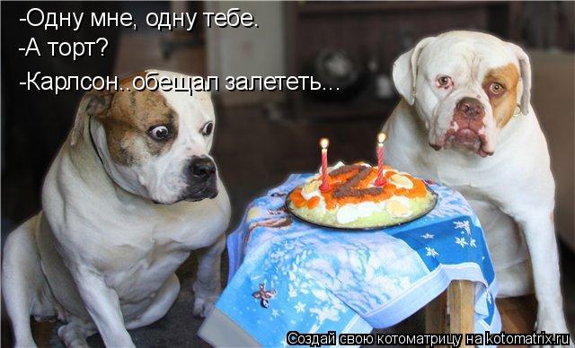 Котоматрица: -Одну мне, одну тебе. -А торт? -Карлсон..обещал залететь...