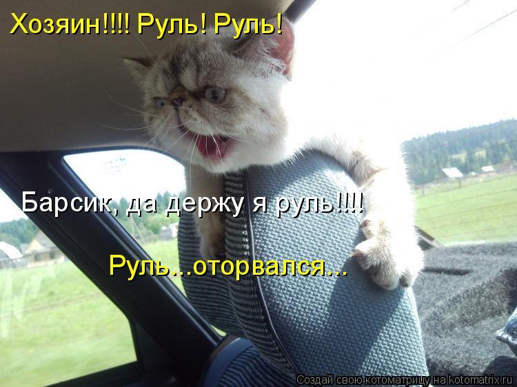 Котоматрица: Хозяин!!!! Руль! Руль! Барсик, да держу я руль!!!! Руль...оторвался...