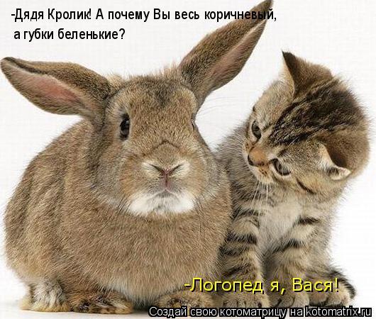 Котоматрица: -Дядя Кролик! А почему Вы весь коричневый,  а губки беленькие? -Логопед я, Вася!