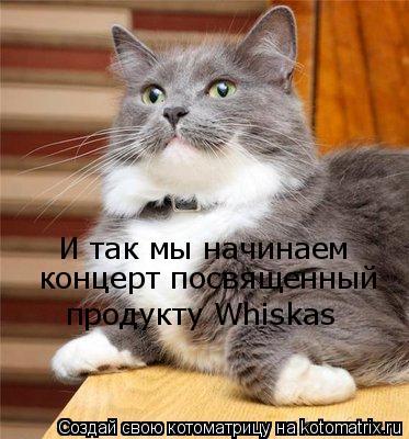 Котоматрица: И так мы начинаем  концерт посвященный  продукту Whiskas