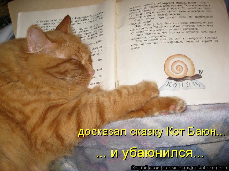 Котоматрица: досказал сказку Кот Баюн... ... и убаюнился...