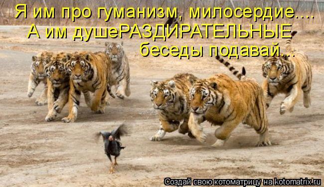http://kotomatrix.ru/images/lolz/2011/09/14/991931.jpg