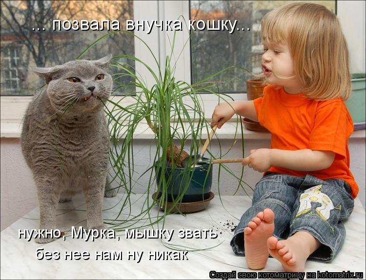 Котоматрица: ... позвала внучка кошку... нужно, Мурка, мышку звать без нее нам ну никак