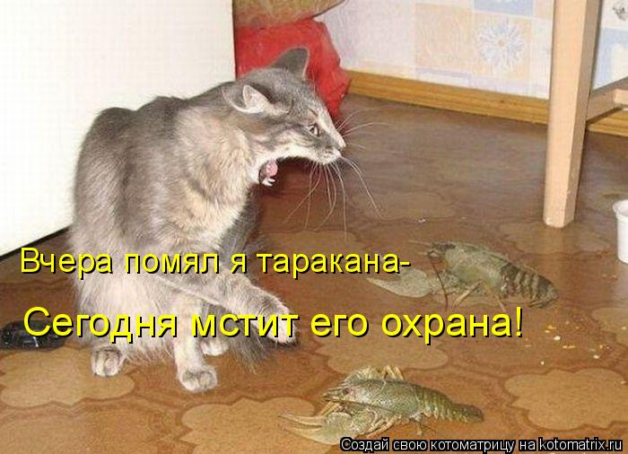 Котоматрица: Вчера помял я таракана- Сегодня мстит его охрана!