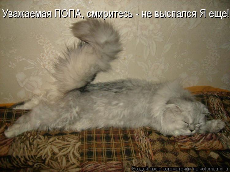 Котоматрица: Уважаемая ПОПА, смиритесь - не выспался Я еще!!!