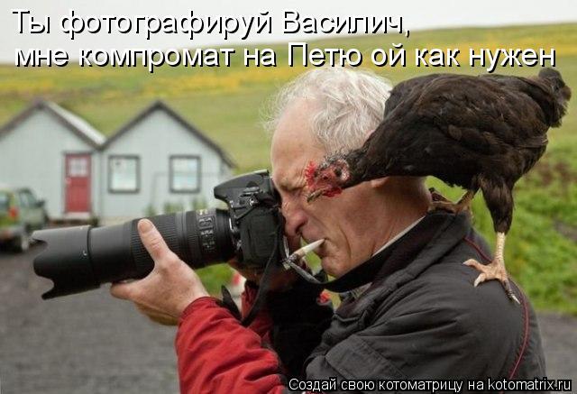 Котоматрица: Ты фотографируй Василич, мне компромат на Петю ой как нужен