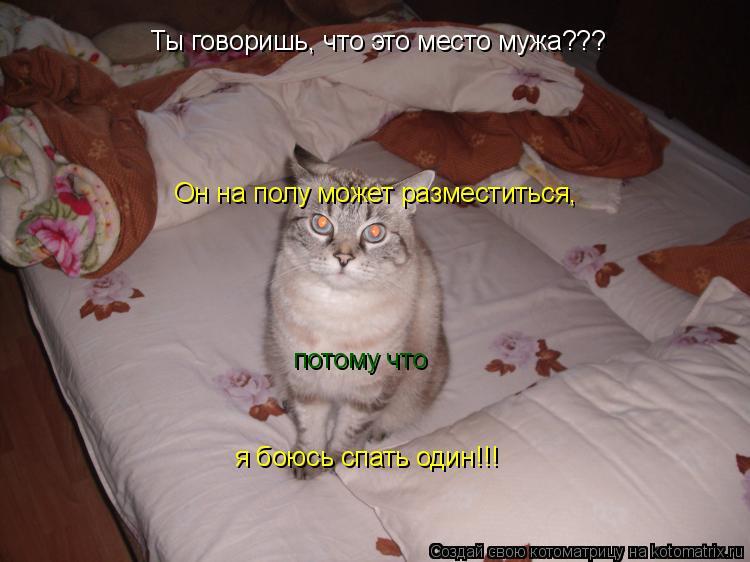 Котоматрица: Ты говоришь, что это место мужа??? Он на полу может разместиться, потому что я боюсь спать один!!!
