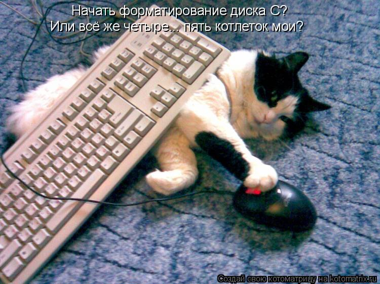 Котоматрица: Начать форматирование диска С? Или всё же четыре... пять котлеток мои?