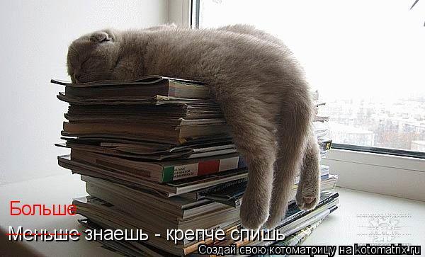 Котоматрица: Больше Меньше знаешь - крепче спишь ------------