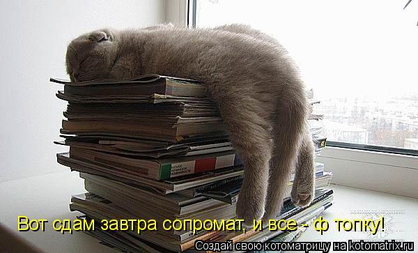 http://kotomatrix.ru/images/lolz/2011/09/15/992699.jpg