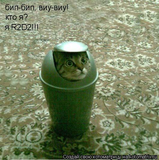 Котоматрица: бип-бип, виу-виу! кто я? я R2D2!!!