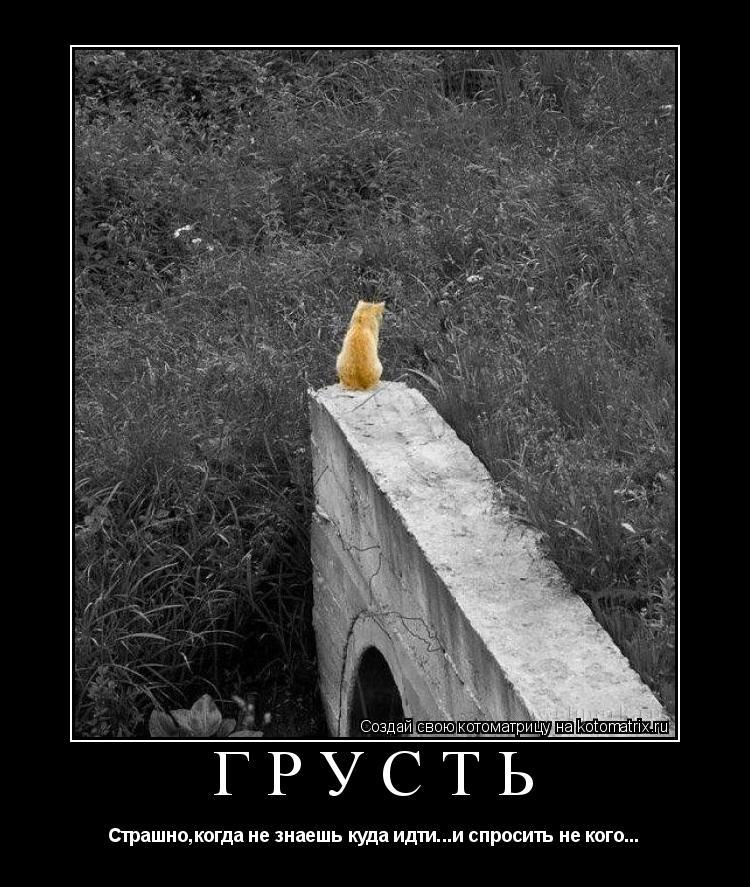 Котоматрица: грусть Страшно,когда не знаешь куда идти...и спросить не кого...