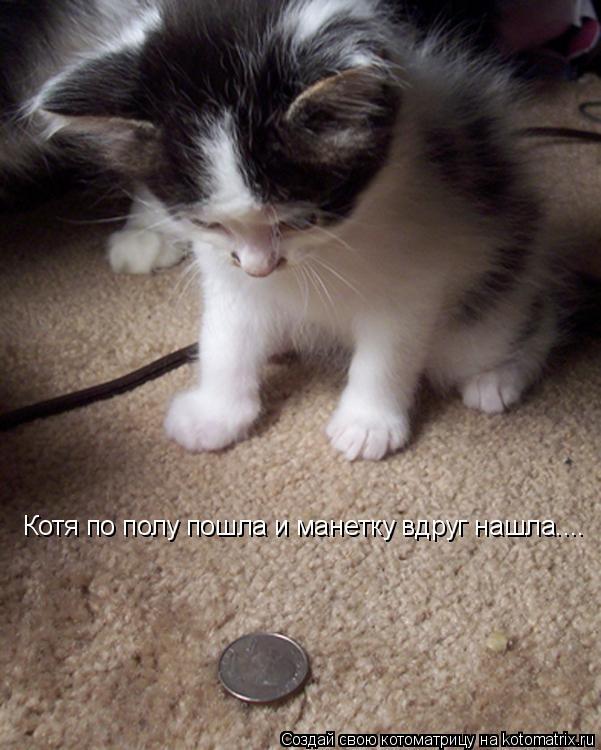 Котоматрица: Котя по полу пошла и манетку вдруг нашла....