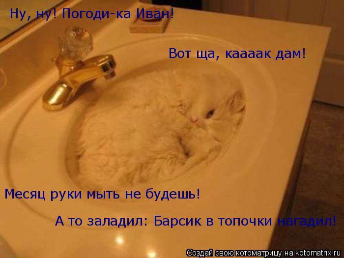 Котоматрица: Ну, ну! Погоди-ка Иван! Вот ща, каааак дам!  Месяц руки мыть не будешь! А то заладил: Барсик в топочки нагадил!