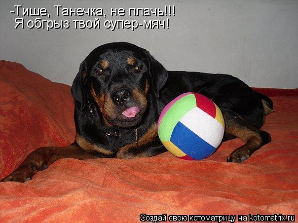 Котоматрица: -Тише, Танечка, не плачь!!! Я обгрыз твой супер-мяч!
