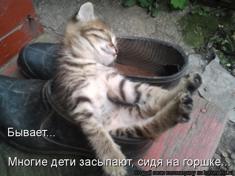 Котоматрица: Бывает... Многие дети засыпают, сидя на горшке...
