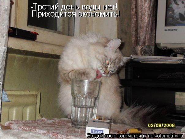 Котоматрица: -Третий день воды нет! Приходится экономить!