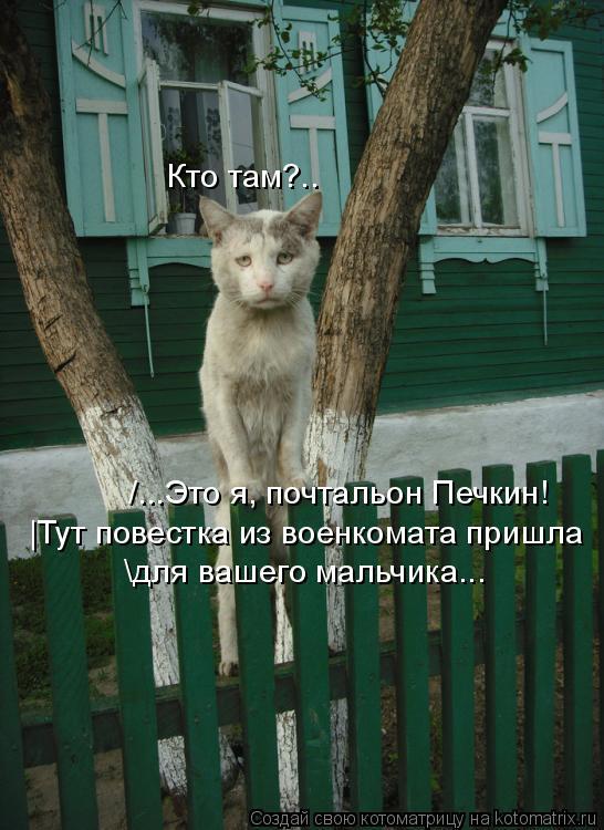Котоматрица: \для вашего мальчика... /...Это я, почтальон Печкин! Кто там?.. |Тут повестка из военкомата пришла