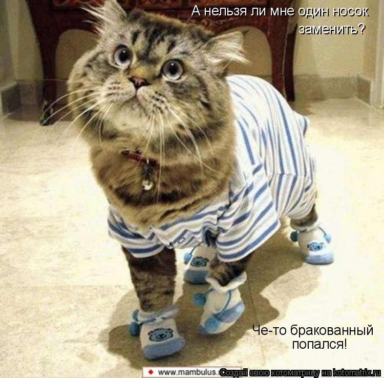 Котоматрица: А нельзя ли мне один носок заменить? Че-то бракованный  попался!