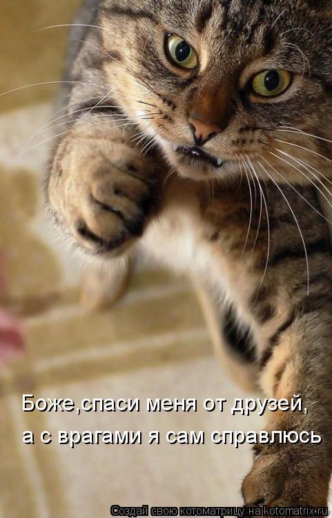 Котоматрица: Боже,спаси меня от друзей, а с врагами я сам справлюсь