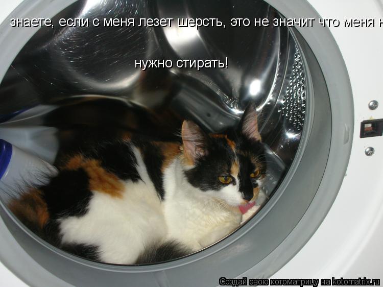 Котоматрица: знаете, если с меня лезет шерсть, это не значит что меня нужно стирать! нужно стирать!