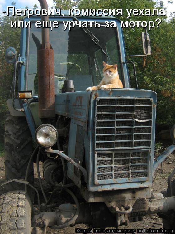Котоматрица: -Петрович, комиссия уехала или еще урчать за мотор?
