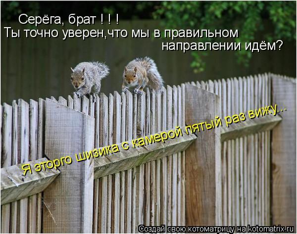 Котоматрица: Серёга, брат ! ! ! Ты точно уверен,что мы в правильном направлении идём? Я эторго шизика с камерой пятый раз вижу...