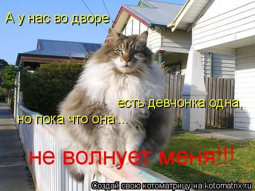 Котоматрица: А у нас во дворе есть девчонка одна, но пока что она  ... не волнует меня!!!