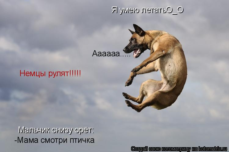 Котоматрица: Я умею летатьО_О Мальчик снизу орёт: -Мама смотри птичка Аааааа..... Немцы рулят!!!!!