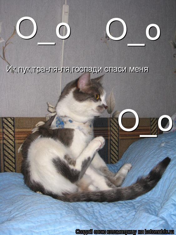 Котоматрица: Ик,пук,тра-ля-ля,госпади спаси меня О_о О_о О_о