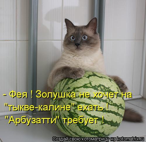 """Котоматрица: - Фея ! Золушка не хочет на  """"тыкве-калине"""" ехать ! """"Арбузатти"""" требует !"""
