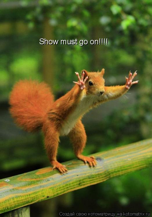 Котоматрица: Show must go on!!!!