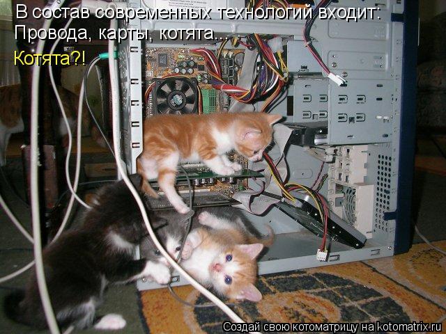 Котоматрица: В состав современных технологий входит: Провода, карты, котята... Котята?!