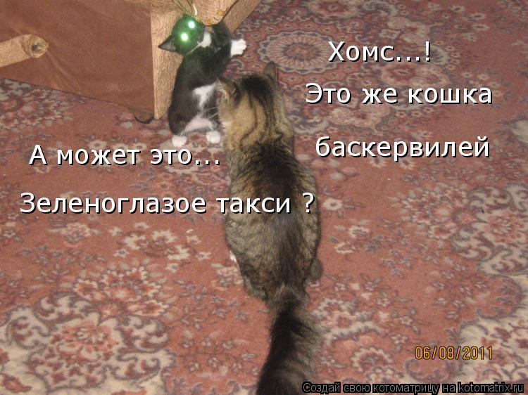Котоматрица: Хомс...! Это же кошка баскервилей А может это... Зеленоглазое такси ?