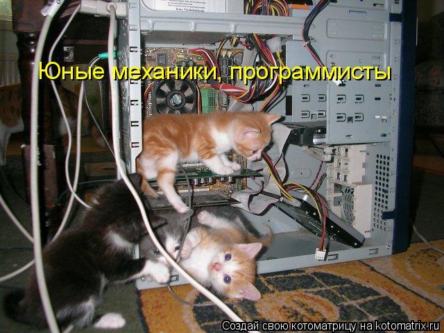 Котоматрица: Юные механики, программисты