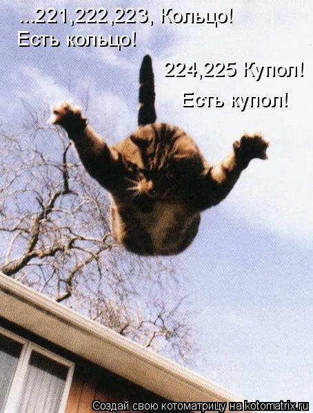 Котоматрица: ...221,222,223, Кольцо!  Есть кольцо!  224,225 Купол!  Есть купол!
