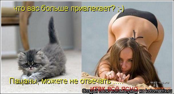 Котоматрица: что вас больше привлекает? ;-) Пацаны, можете не отвечать ..... итак всё ясно......
